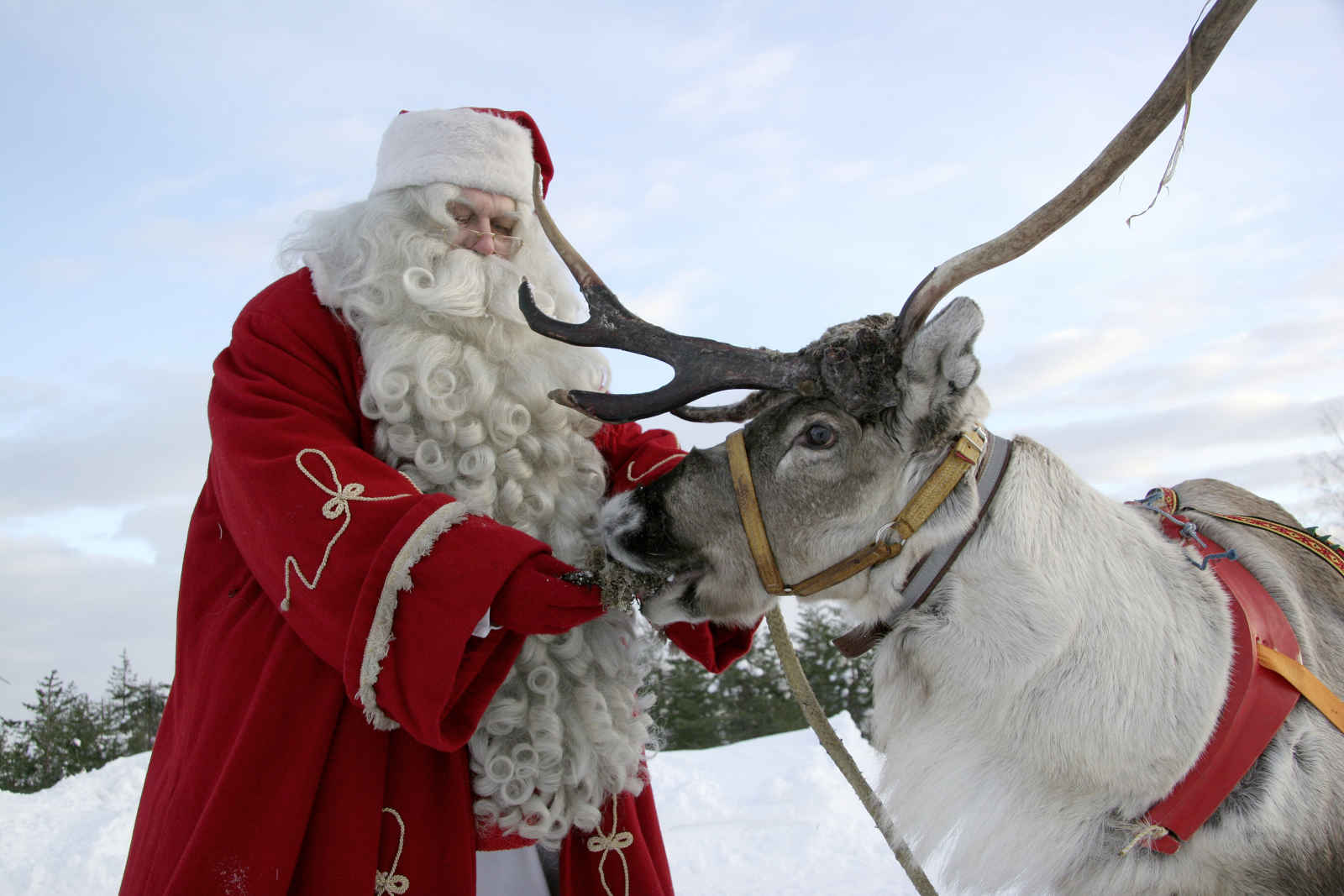 Fêtes de fin d'année au Santa's Hotel Aurora - voyage  - sejour
